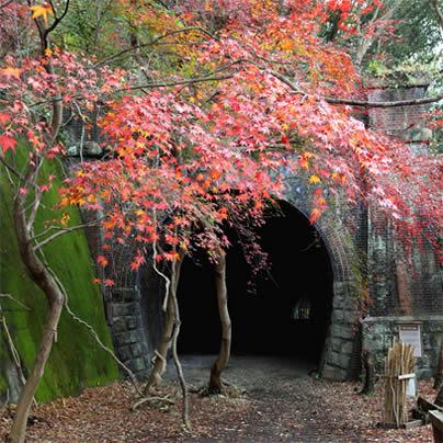 20201203俳句吟行愛岐トンネル郡